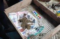 В Покрове у мужчины нашли тротиловую шашку и пакеты с коноплей (ФОТО)