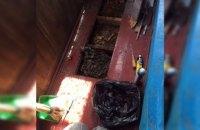 В Днепре под деревянным полом жилой квартиры поселился рой насекомых (ФОТО)