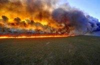 Причина пожаров - человеческий фактор: в ГСЧС сообщают о большом количестве возгораний в экосистемах Днепропетровщины