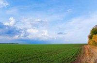 В Украине посеяли 40% озимых