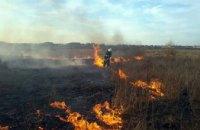 На Днепропетровщине за минувшие сутки произошло 4 пожара в экосистемах: спасатели призывают граждан не поджигать сухую траву (ФОТО)
