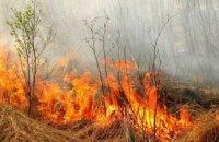 На Днепропетровщине объявлена высокая пожарная опасность