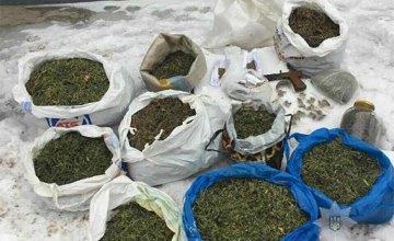 В Кривом Роге изъяли наркотики на миллион гривен