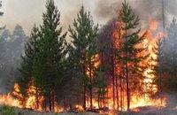 За 2021 год на Днепропетровщине возникло 9 пожаров в лесхозах
