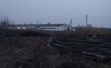 На Днепропетровщине мужчина убил собственную мать и закопал ее тело в поле