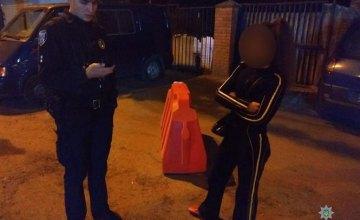 В Днепре женщина украла дорожный строительный конус (ФОТО)
