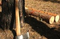 На Днепропетровщине лесхоз предлагает гражданам законно получить дрова