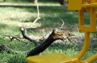 Власти Днепропетровска не будут срезать угрожающие детям аварийные деревья