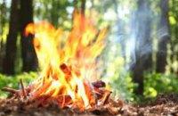 В Днепропетровской области объявили чрезвычайный уровень пожарной опасности