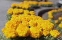 В Днепре продолжаются плановые работы по высадке цветов