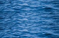 В Ивано-Франковской области отец погиб спасая троих тонущих детей