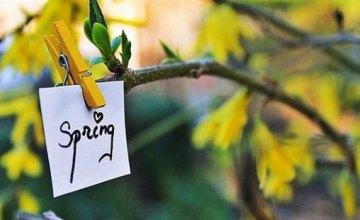 Когда на Днепропетровщину придет весна: прогнозы синоптиков