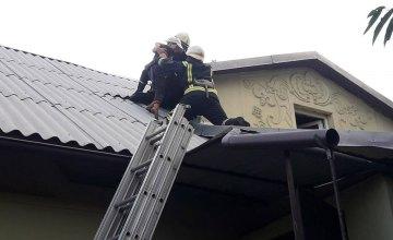 Залезла и не смогла спуститься: в Каменском спасли ребенка, который застрял на крыше дома