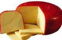 Украинец пытался незаконно пронести через границу  33 кг сыра