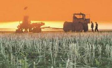 Удачная зима: аграрии Днепропетровщины получили более 97% всходов озимых