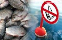 С 1 апреля на Днепропетровщине начинается нерестовый запрет на вылов рыбы