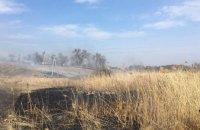 В Криничанском районе сгорело 1,6 га сухостоя