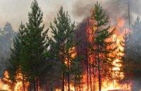 Днепропетровщина ежегодно занимает 1-ое место в Украине по количеству пожаров в экосистемах, - Сергей Качан