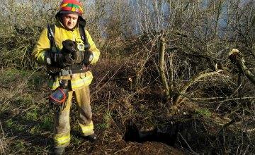 В Петропавловском районе спасатели помогли щенку выбраться из заброшенного колодца глубиной 15 метров