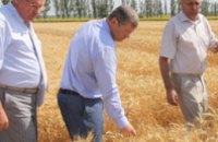 Хозяйства Днепропетровской области начинают формировать региональный ресурс зерна