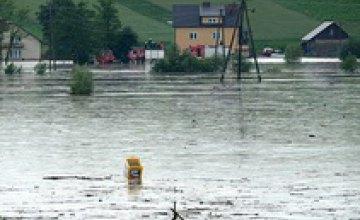 В Днепропетровской области в реке Самара утонула девушка