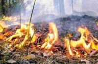 На Днепропетровщине объявлена высокая пожароопасность
