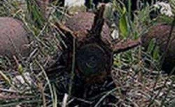 В Жовтневом районе обнаружили минометную мину