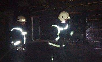 На Днепропетровщине вовремя пожара в хозяйственном здании сгорел домашний скот