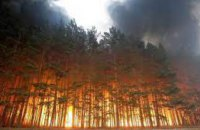 С начала года  на Днепропетровщине произошло 16 лесных пожаров
