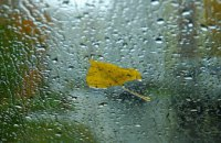Ветер, дожди и грозы: какая погода ожидается на Днепропетровщине в последние дни сентября