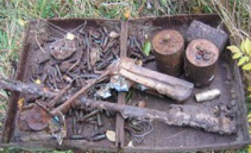 87 мин времен Великой Отечественной войны нашли сотрудники МЧС в Криворожском районе