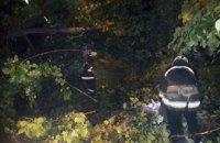 В Днепре на территории детского сада рухнуло 30-метровое дерево (ФОТО)