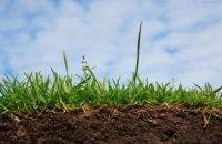 Арендовать или покупать: эксперты рассказали, как в Днепре выгодно инвестировать в землю
