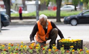 Відновлення квітників: у парках Дніпра висадять близько 45 тисяч квітів