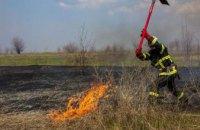 На Днепропетровщине спасатели потушили пожар в экосистеме