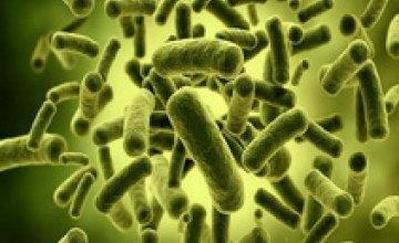 Ученые выявили в домашней пыли около 9 тыс видов микробов