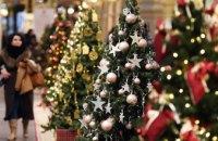На Днепропетровщине к Новому Году продали около 17 тыс. елок