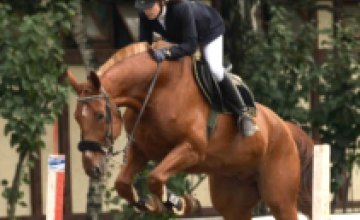 В Днепропетровск привезли 12 лошадей для Чемпионата Мира по современному пятиборью