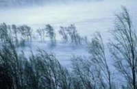 С четверга в Украину придет похолодание