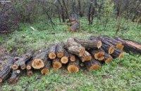На Днепропетровщине «на горячем» попались двое браконьеров