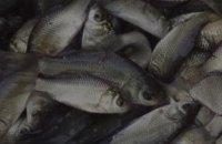 За неделю Днепропетровский рыбоохранный патруль изъял более 50 кг водных биоресурсов