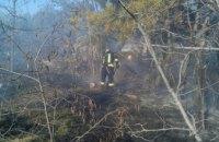 На Днепропетровщине стартовал сезон пожаров в экосистемах