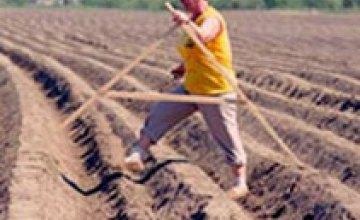 Днепропетровская область начала посев ранних яровых зерновых культур