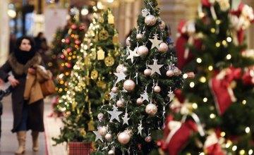 Стало известно, сколько будет стоить новогодняя елка в Днепре