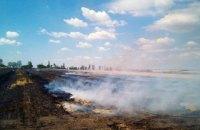 На Днепропетровщине горело поле площадью почти 5 гектаров