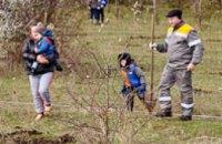 В Днепропетровской области в Апостолово прошла акция «Чистый город» (ФОТО)