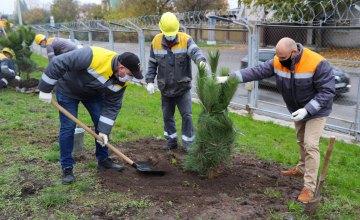 Зелене місто: працівники ДТЕК Дніпровські електромережі висадили близько 400 дерев в Дніпрі та області