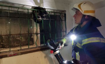 В Каменском кот застрял в металлической решетке: на помощь пришли спасатели