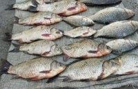 На Днепропетровщине в течение выходных изъяли почти 500 кг незаконно добытой рыбы