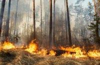 На Днепропетровщине объявили чрезвычайную пожарную опасность